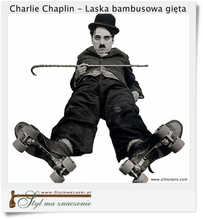 laska bambusowa Charlie Chaplin