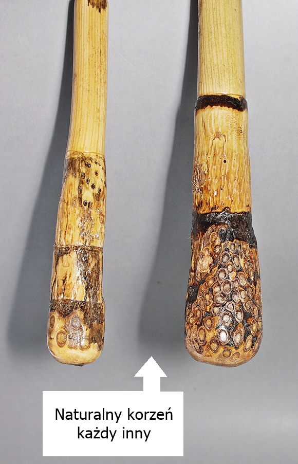 Laska drewniana pasterska